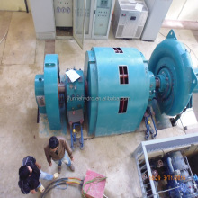 Hydro power Francis turbine/1-100MW turbine/High efficiency turbine