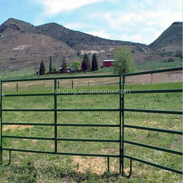 Steel Tube Corral Fencing Panels Galvanized Pipe Horse