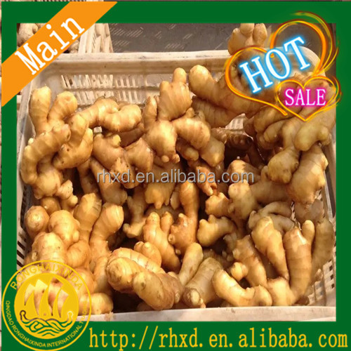 Washed ginger Ginger Price Bulk Fresh Ginger