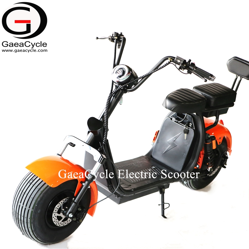 Gaea mountain bike electric fat bicycle tire citycoco electric scooter 1000w