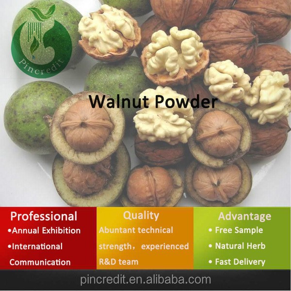 walnut nut,walnut shell,walnut powder
