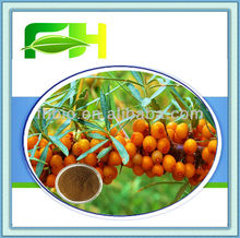 Best Quality Natural Fructus Hippophae P.E.