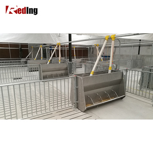 Automatic feeding system of stainless steel feeding trough professional pig breeding equipment seller