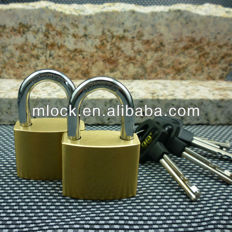 High Quality Hinged lock MOQ 100PCS free shipping within 5 days