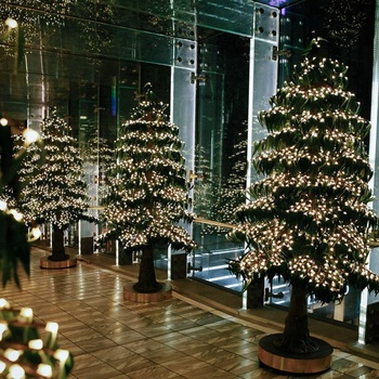 wholesale 2018 new outdoor and indoor landscape decoration giant artificial led christmas tree light