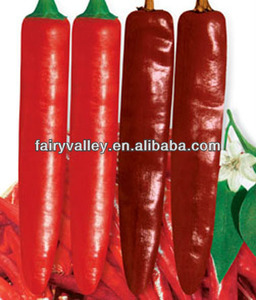 California 688-Hot Chili Seeds Pepper Seeds For Sale Special Variety For Dry Chilis