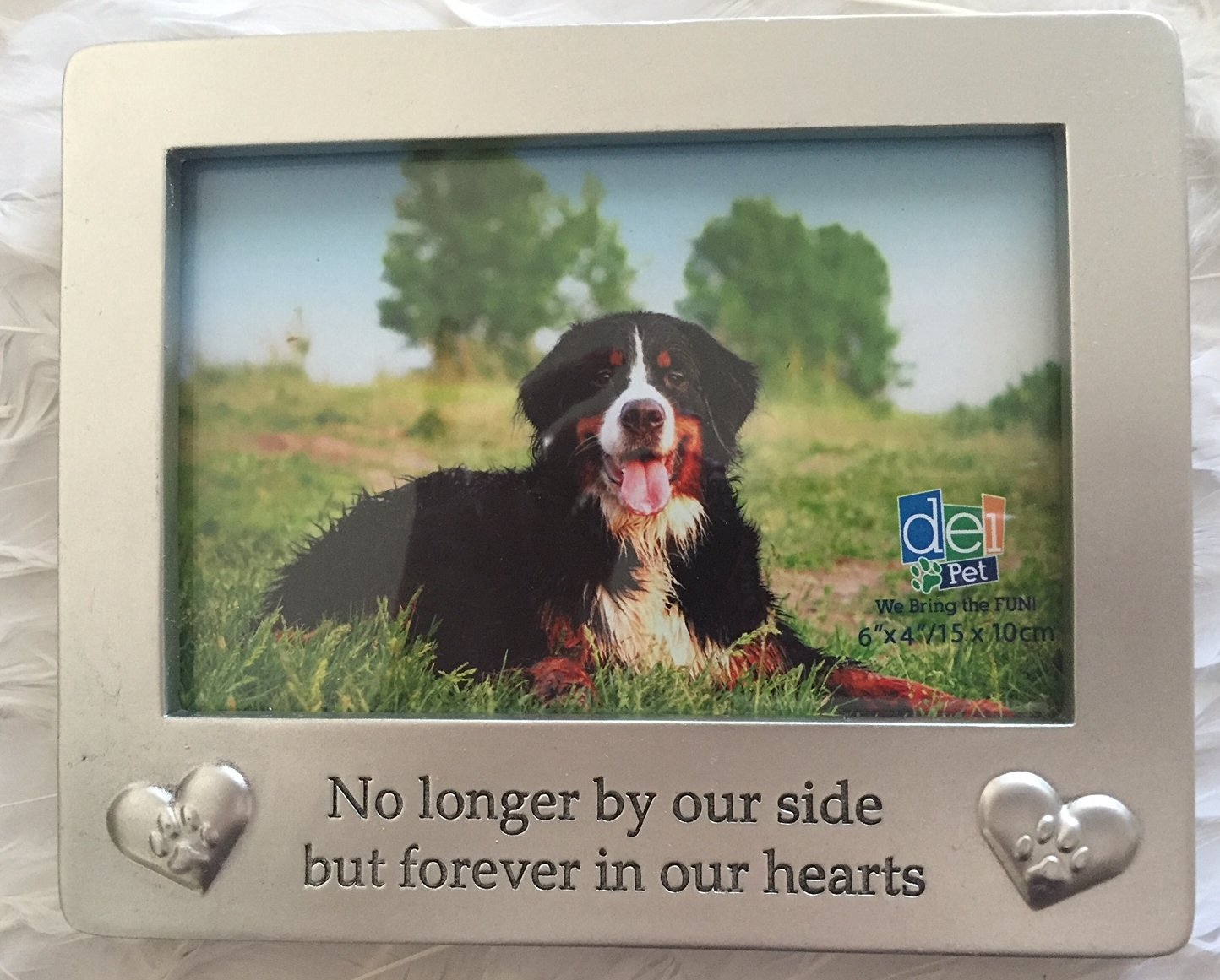 Buy Roman Photo Frame Forever In Our Hearts Memorial In Cheap Price