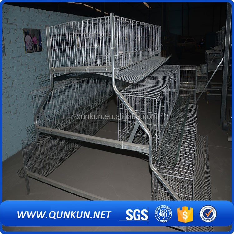 gabbie bambino/Poultry farming battery cage battery cage with hand controling feeding equipment