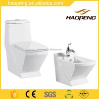Bathroom Design Ceramic Washdown One Piece Water Closet Combination Toilet and Bidet