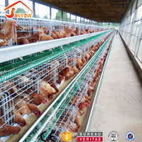 Automatic A type layer egg chicken cage 3 tier battery cage poultry farming equipment in kerala