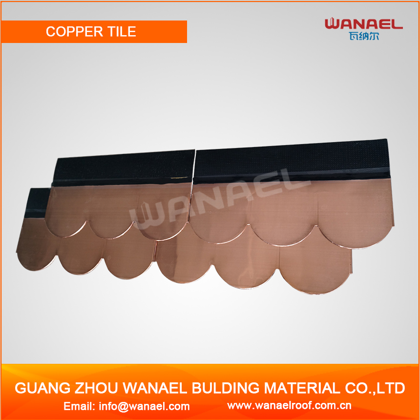 Modern House Design Wanael Metal Roof Fish Scale Copper