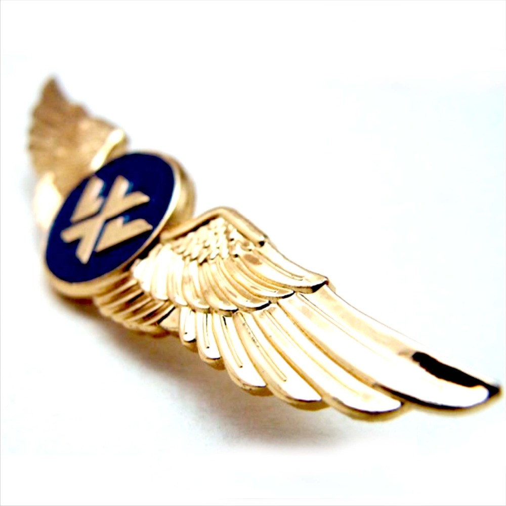 Custom Design Airline Pilot Wing Metal Badge Pin - Buy Metal Badge,Pilot  Wing Badge,Metal Badge Pin Product on Alibaba com