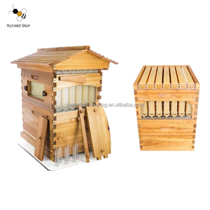 Flow beehive, good quality honey auto flow beehive / Automatic flow bee hive used for beekeeping