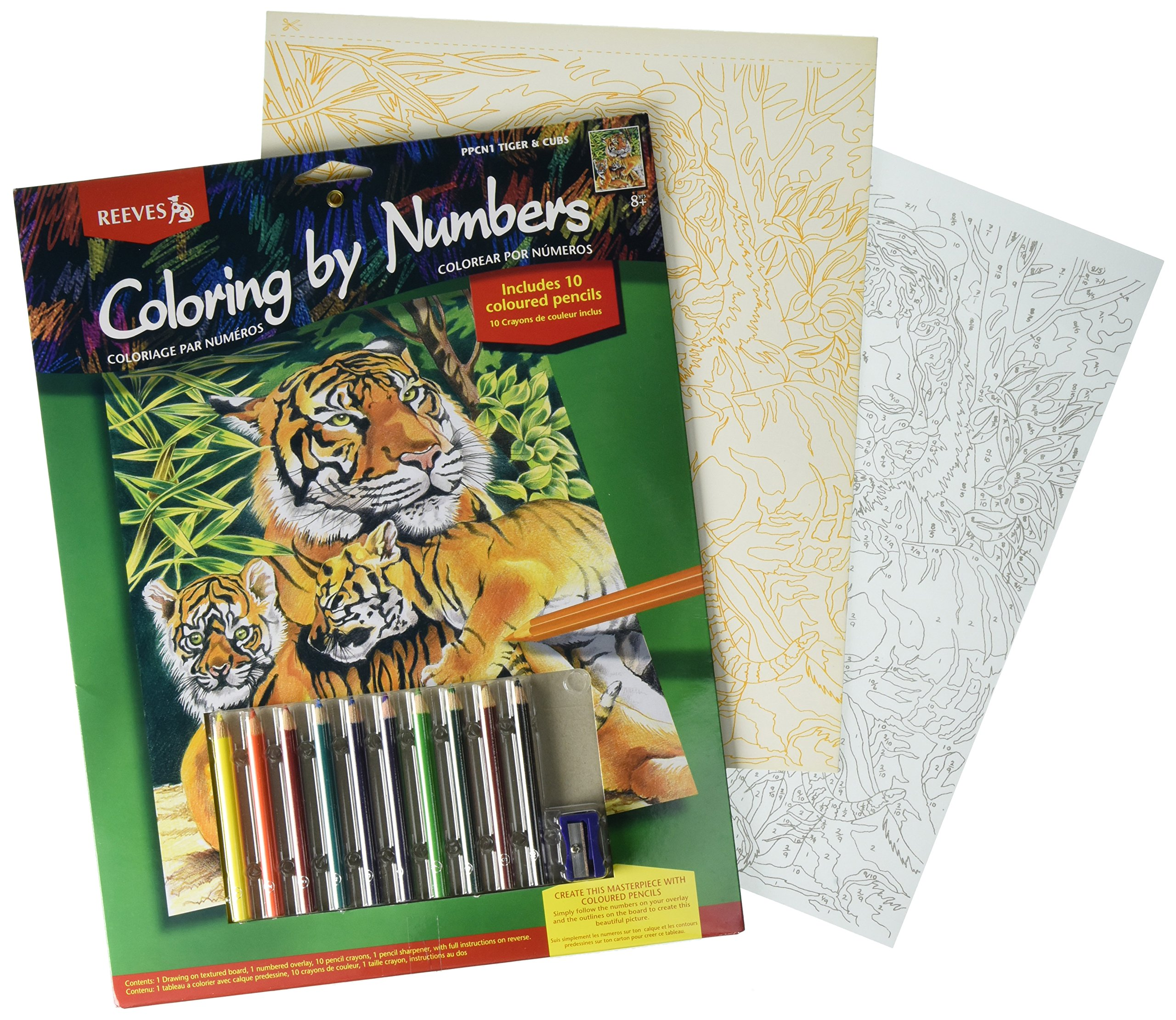 Buy Reeves PPCR1 Large Colored Pencil By Numbers - Tigers and Cubs ...