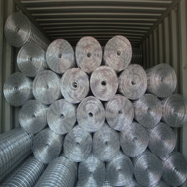 2014 Hot Sale Welded Wire Mesh Roll Used For Chicken Fencing And ...
