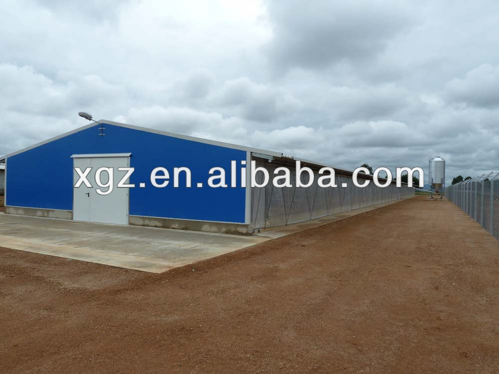 Prefabricated steel structure commercial chicken house