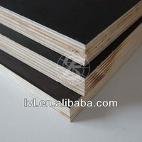 poplar core melamine glue brown film faced plywood for Qatar