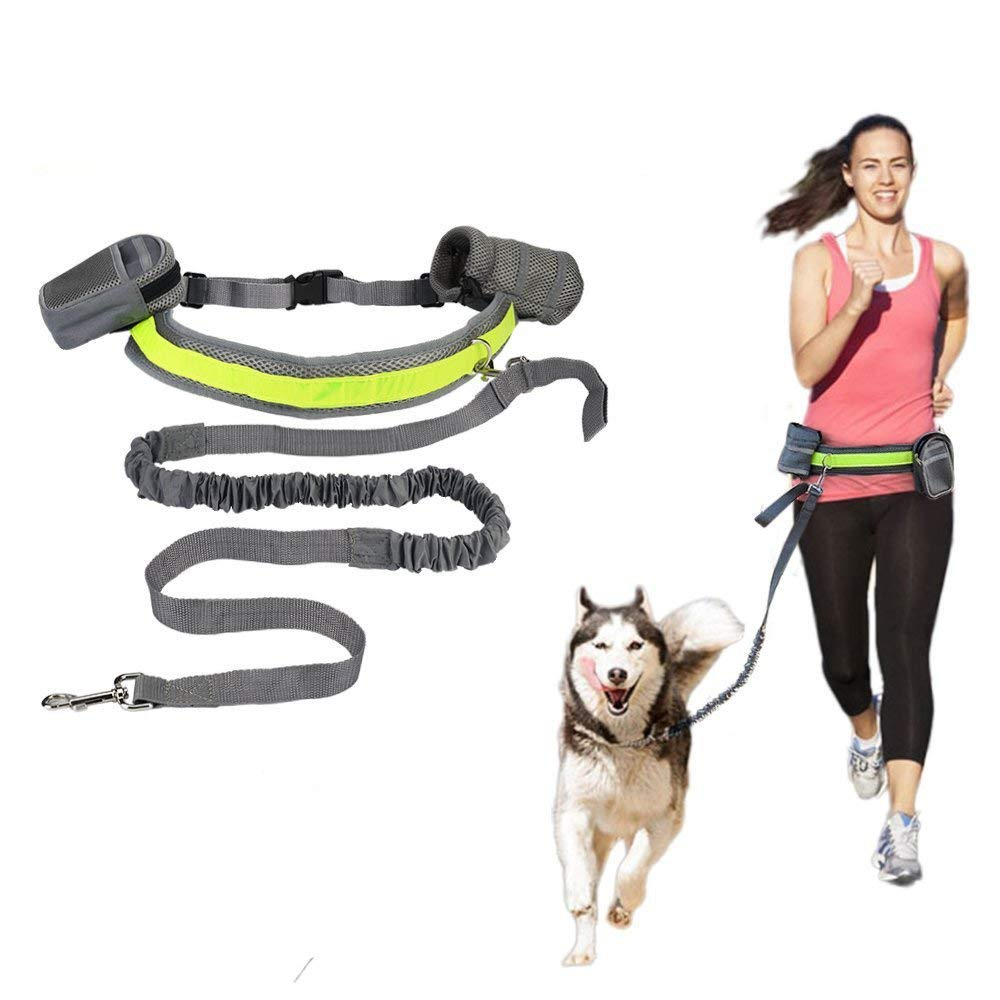 Hands Free Dog Training Leash Running Dog Leash Adjustable Belt Light Weight Leashes Dog Leash with Bottle Holder Waist Bag, Best Night Walker Safety Dog Leash, Green Reflective Stripe Dog Leash