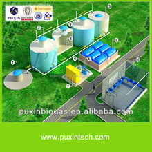 China big size biogas equipment