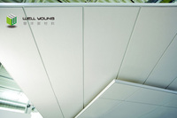 Multifunctional fiberglass ceiling tiles with great price