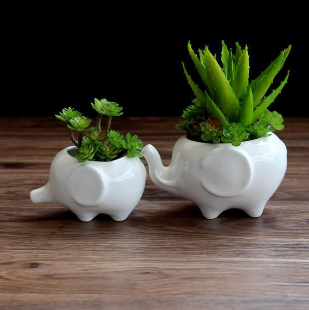 White Ceramic Indoor Plant Pots, White Ceramic Indoor Plant Pots ...