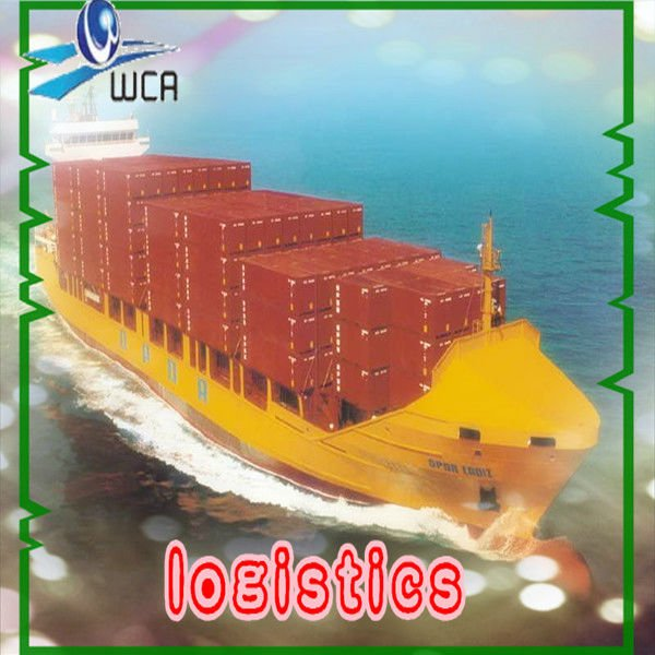 professional sea transportation from china to worldwide