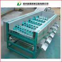 Fruit Process Plant/Garlic Sorting Machine/Onion Grading Machine