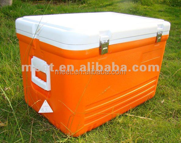New Stylish Hot Selling Picnic Lunch Outdoor Insulated Type Plastic Picnic Ice Cooler Box For Car Storage