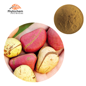Buyers Competitive Cola acuminata kola nuts extract seed powder bitter kola