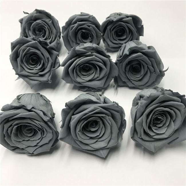 Abu Abu Naik Warna Dye Exotic Segar Diawetkan Bunga Mawar Mawar Potong Ekspor Ke Uea Buy Diawetkan Bunga Mawar Bunga Grosir Recisi Exotic Segar Mawar Potong Product On Alibaba Com