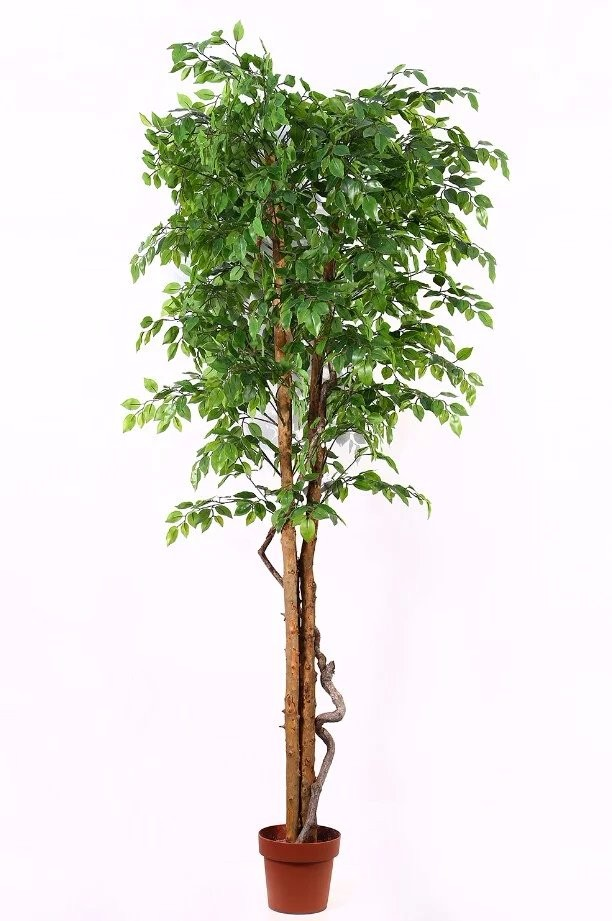 plastic live ficus tree small mini artificial ficus treesfake banyan tree bonsai - Ficus Trees