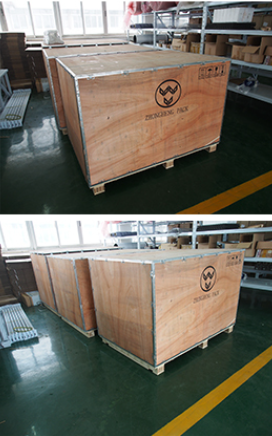 Automatic 10 head Combination Multi-head Weighing Machine with Sea Foods Vertical Packing Machine