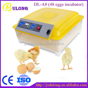 Dulong Most Welcomed with low price egg incubator in jeddah