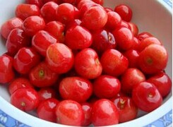 2014 new canned cherry in syrup