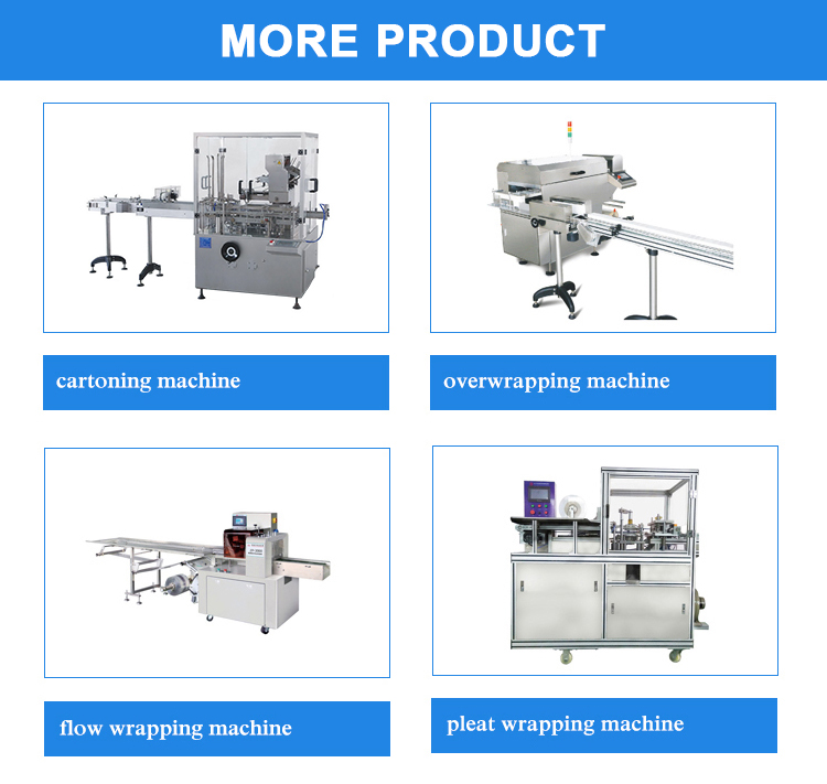 Factory Price Auto Bottles Automatic Packaging Cartoning Machine, Bottling Packaging Cartoning Equipment