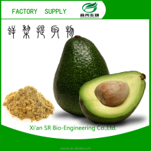 china supplier Persea americana Mill./Pure Avocado Extract Powder,Natural And Pure Avocado Extract Powder