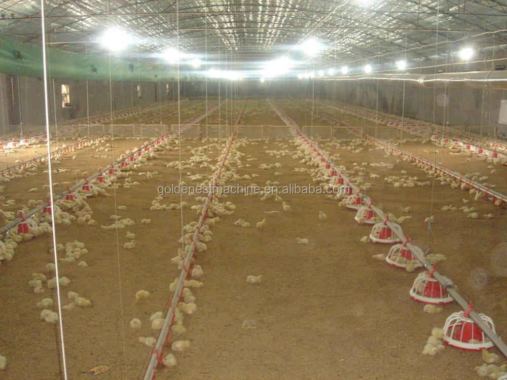 Automatic Complete chicken feeding line/ Poultry feeder auger/Broiler automatic feeding equipment