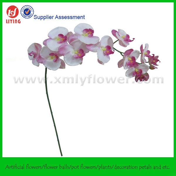 "44"" Long Stem Wall Hanging Orchid ( 12FLWS)"