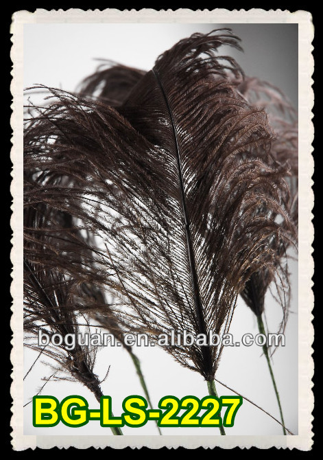 on Wired Stem Brown Ostrich Feathers