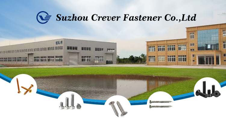 Nieuwste aangepaste fabriek prijs nylon nail schroef voor anker en plug