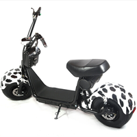 Holland Warehouse Nzita Cool 1000w motor 80km the most fashionable citycoco 2 wheel electric scooter, adult electric motorcycle