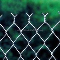 Galvanized PVC coated chain link fence factory wholesale
