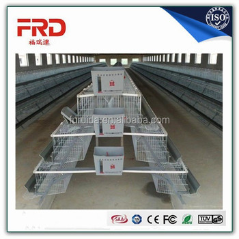 chicken use galvanized steel material a type chicken cages for poultry farm