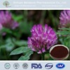 CAS 485-72-3Red Clover Extract with specification of 2.5%,8%,20%,40%,60% Total Isoflavones