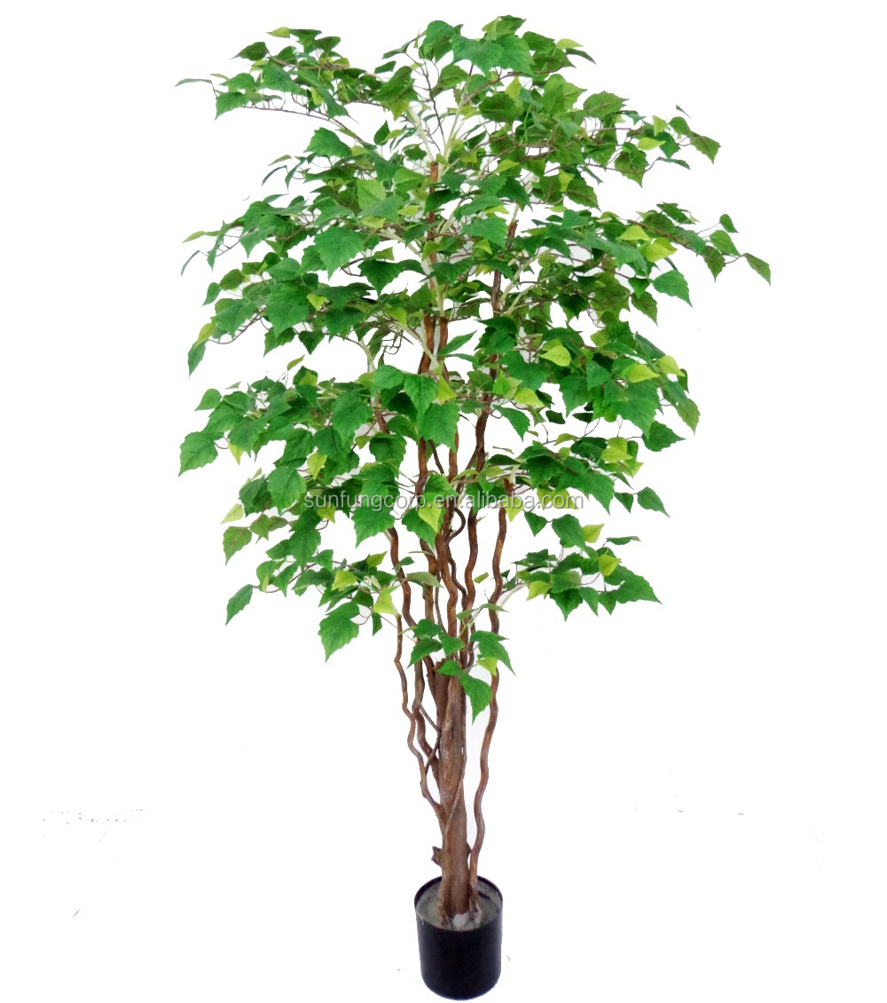 Sun Fung 60'' Birch Tree on Natural Trunk Twotone Green Tree for wholesale
