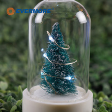 EVERMORE Small Christmas Tree holiday Fairy Light In Bottle