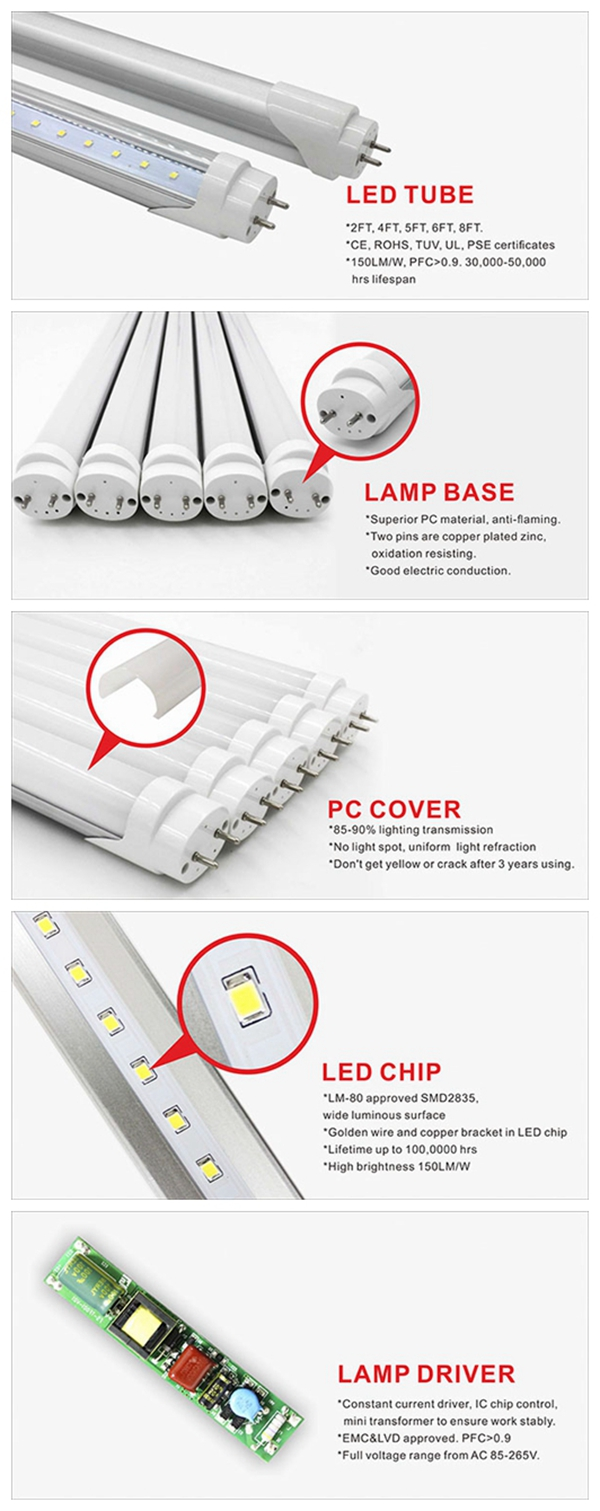 CE RoHS SAA TUV FCC PSE senser integrated T8 T5 price led tube light t8