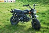 SKYTEAM 125CC 4 STROKE MINI MONKEY BIKE GORILLA Motorbike (EEC,EUROIV EURO4,EPA approved)