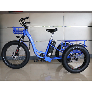48v 500w 750w front drive motor 13 ah lithium battery powered three wheel cargo electric bike 3 wheel tricycle