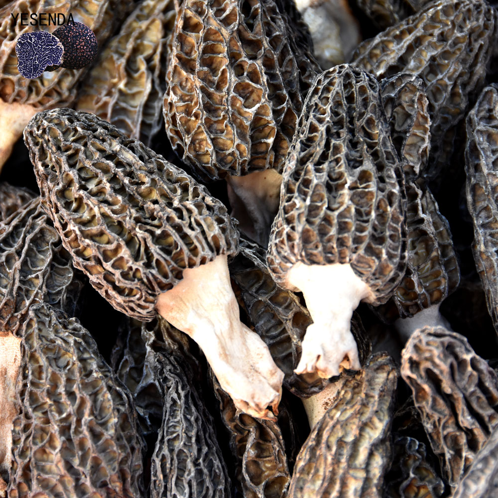 low price black morel mushroom for sale